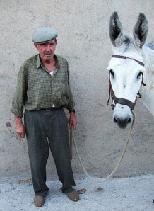 It's impossible to talk to this man about purchasing his mule without giggling.